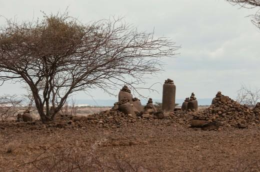 Fiebig Turkana-3226