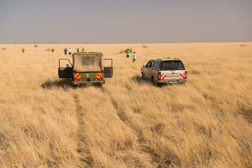 Fiebig Turkana-7988